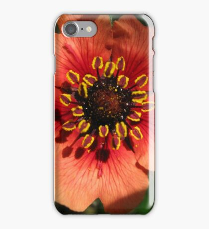Orange Flower – Macro Close-Up iPhone Case/Skin