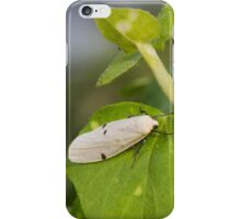 insect on leaf iPhone Case/Skin