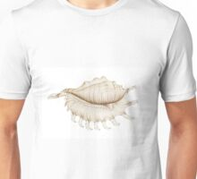 Spider Conch Shell in Coloured Pencil Unisex T-Shirt