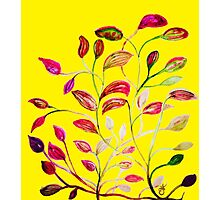 Red and Green Leaves! Yellow Sunshine! Photographic Print