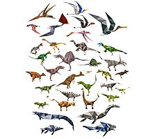 Colored Dinosaurs chart Photographic Print