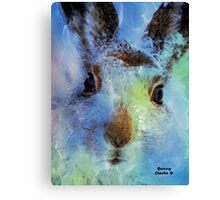 Who Goes There? Canvas Print