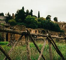 Roman Wooden Fence by PatiDesigns