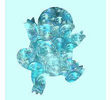 Squirtle Bubbles Silhouette Photographic Print