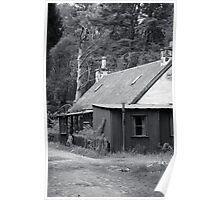 Tin house in the woods Poster