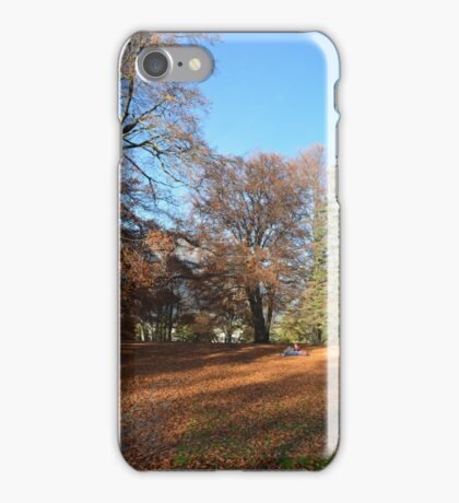 Nature relaxing iPhone Case/Skin