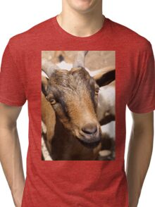 Don't Fur GOAT The GINGER!!!! Tri-blend T-Shirt