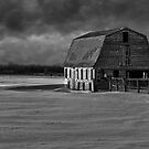 Old Barn At Sunset Black and White 2014-1 by Thomas Young