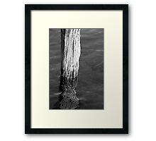 Single Old Piling 5 BW Framed Print