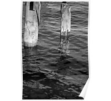 Two Old Pilings 2 BW Poster