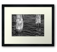 Two Old Pilings 3 BW Framed Print