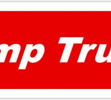 Bumper Sticker 2016 Series: Dump Trump Sticker