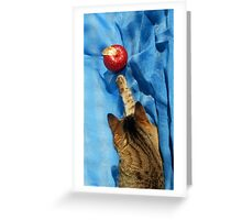 Cat and the Apple Greeting Card