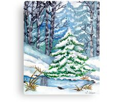 Winter Spruce Tree Metal Print