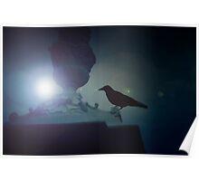 Black raven sitting on the ledge in the moonlight Poster