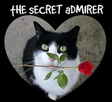 The Secret Admirer by Ladymoose