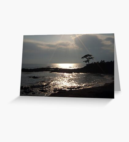 Sunshine on Tateishi Beach Greeting Card