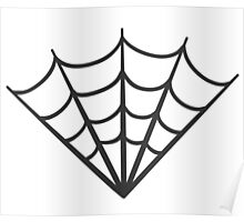 spider web (1) Poster