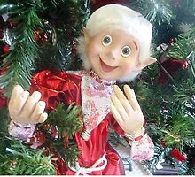 *On the Christmas Tree in Gisborne florist Shop - Vic. Aust.* by EdsMum