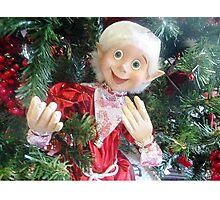 *On the Christmas Tree in Gisborne florist Shop - Vic. Aust.* Photographic Print