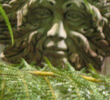 Within the Ferns Sticker