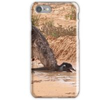 Emu ~ Drink with your back to the Wind iPhone Case/Skin