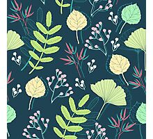 Spring-leaf-and-flower-seamless-pattern-vector Photographic Print