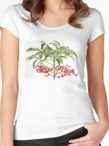 Spice Berry Coral Ardisia Evergreen Shrub Women's Fitted Scoop T-Shirt