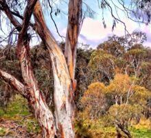 Gum Tree By The Billabong Sticker