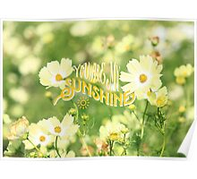 You Are My Sunshine Pretty Yellow Cosmos Flowers Poster