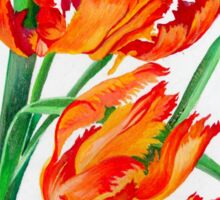 Birthday Wishes - Parrot Tulips Sticker