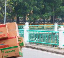 Scooter Cardboard Box Load Hanoi Sticker