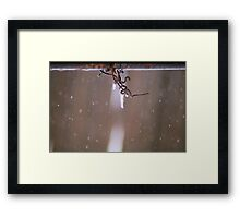 Frozen Wire Framed Print