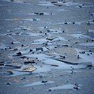 River on January  by Bluesrose