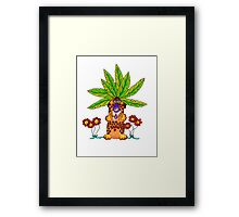 Coco-nuts Framed Print