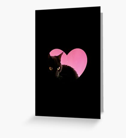 Catty Valentines Greeting Card