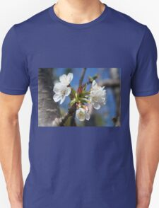 Cherry Blossom In Spring Sunlight T-Shirt