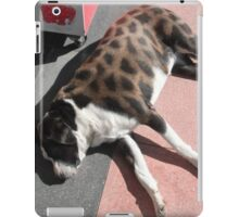 Such A Dazzling Fur Coat Of Many Colours iPad Case/Skin