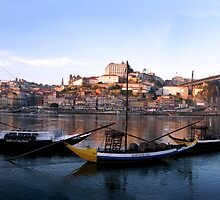 Oporto panorama by CiaoBella