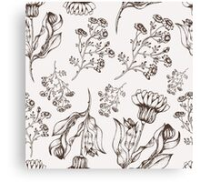 Medicine herb vector seamless nature pattern. Hand drawing sketch illustration Canvas Print