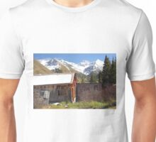 Animas Forks Unisex T-Shirt