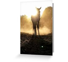Enlighted Greeting Card