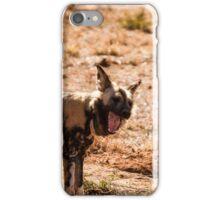 Wild dog iPhone Case/Skin