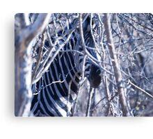 Zebra camo. Canvas Print