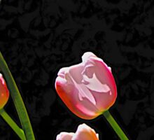 Just Tulips Sticker