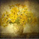 Chrysanthemums by Kenneth Hoffman
