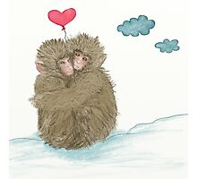 Hugging Snow Monkeys With a Heart Shape Balloon Photographic Print