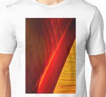Luscious Curves Unisex T-Shirt