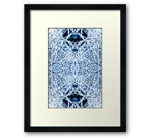 Ice Storm #1 Framed Print
