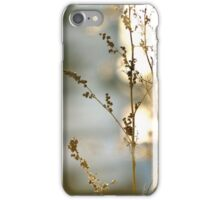 Frosty Mornings iPhone Case/Skin